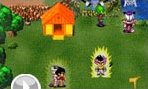 Dragon Ball Z Village